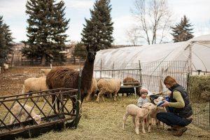 Cure Organic Farm